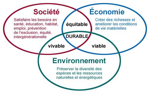 piliers-developpement-durable   stratégie dentreprise piliers du développement durable Les piliers du développement durable développement durable DD