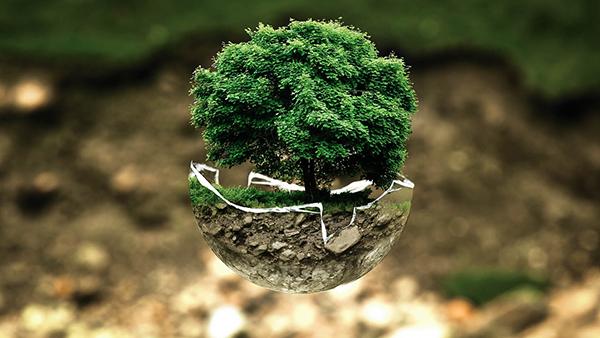 386739467f8 je-suis-vert-2 produits bio cosmétiques bio alimentation bio achat éco  responsable