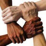Management de la diversité en entreprise : les petits ruisseaux font les grandes rivières